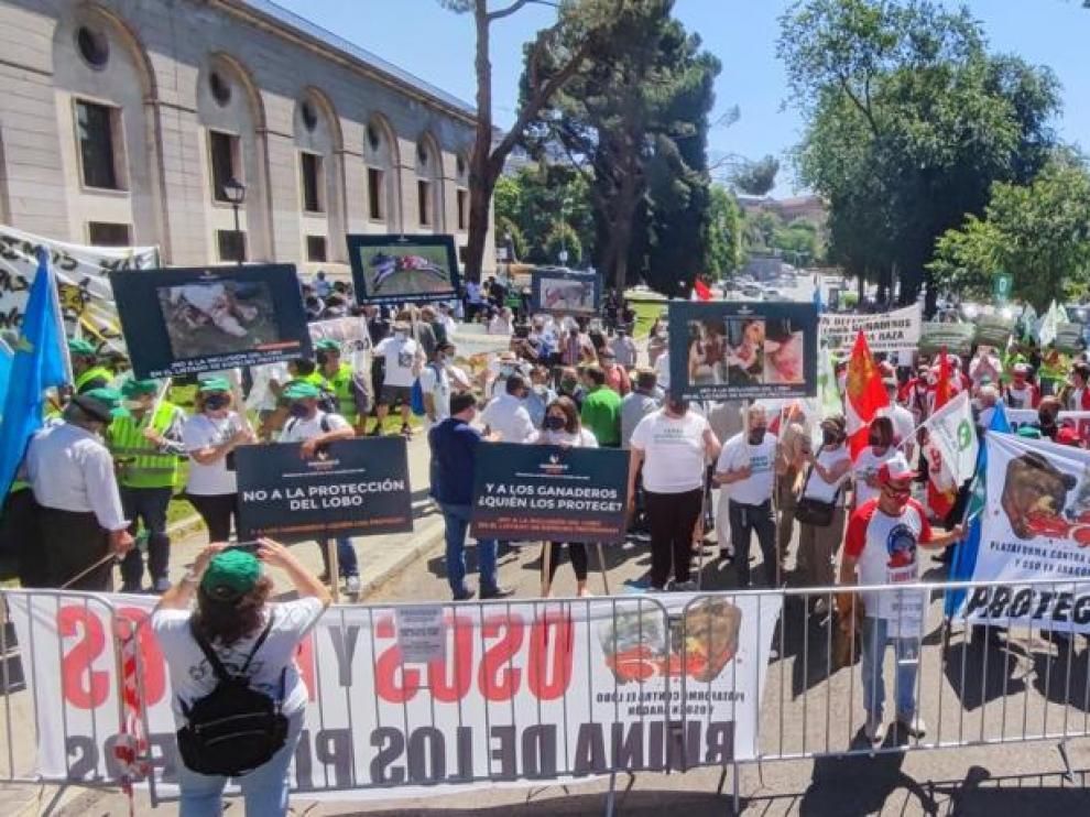 Manifestantes de Aragón en una concentración en Madrid contra la inclusión del lobo en la Lespre.