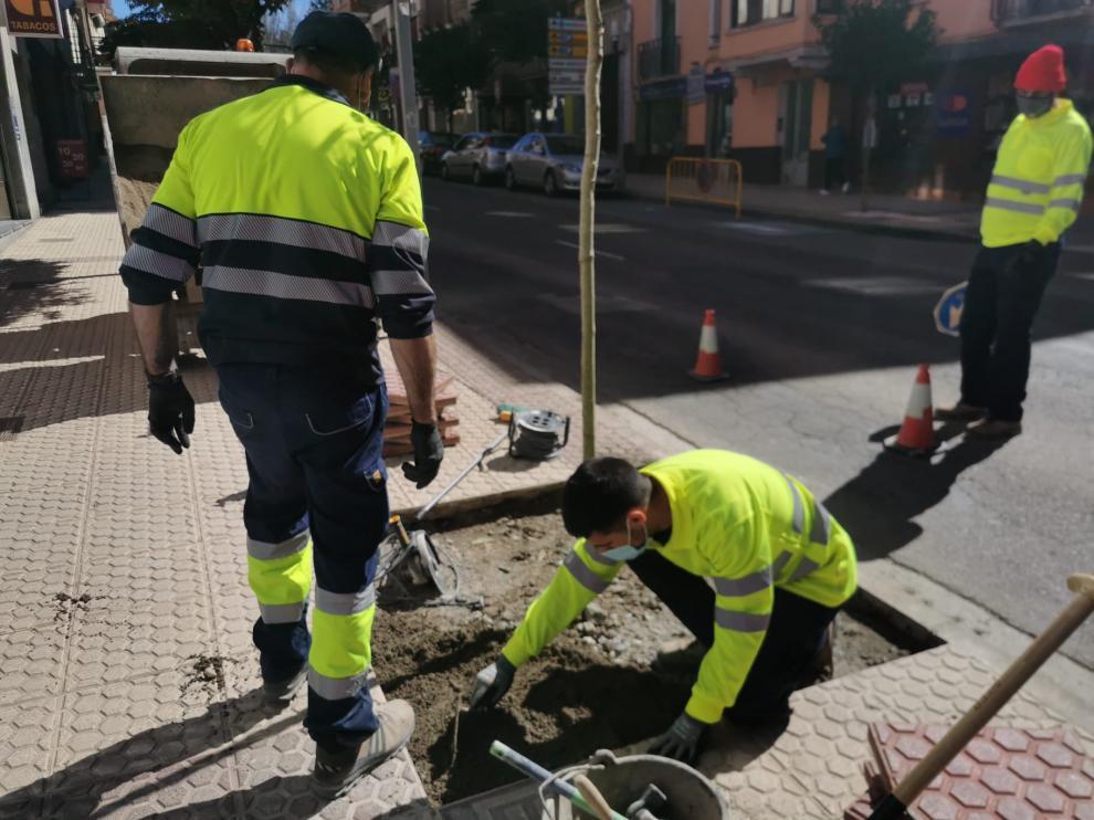 Trabajadores del Plan Remonta realizando labores de mantenimiento en la calle Serrablo de Sabiñánigo.