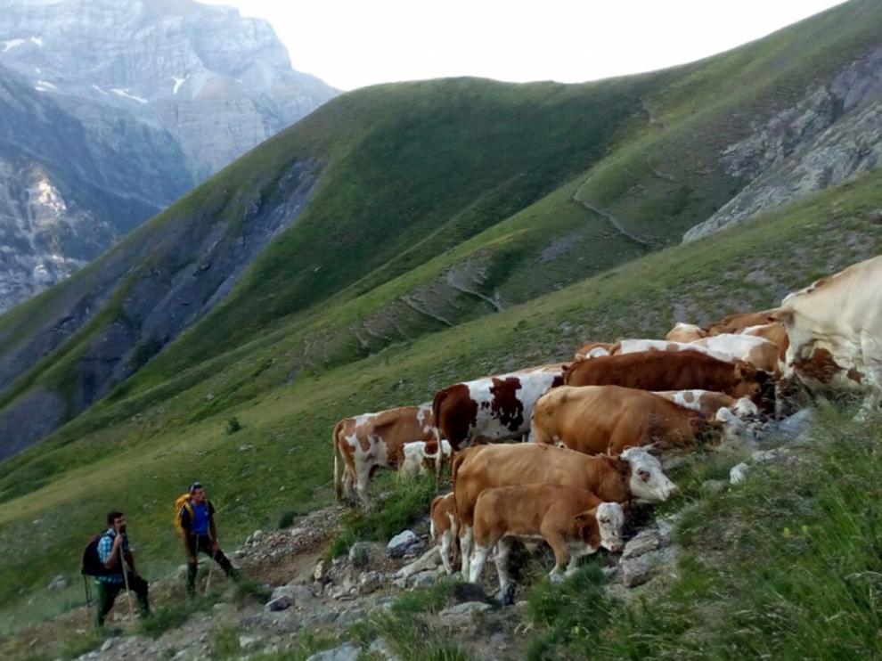 La sostenibilidad, una de las claves fundamentales para el turismo del futuro.