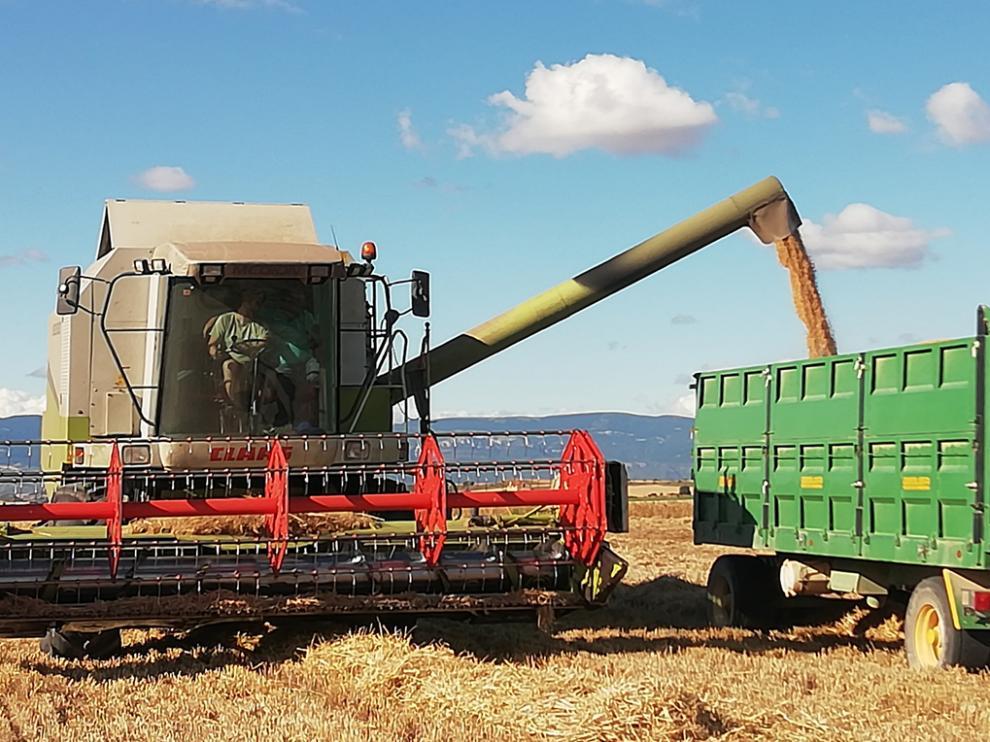 Esta decisión va a permitir una importante inyección de liquidez a los agricultores y ganaderos españoles