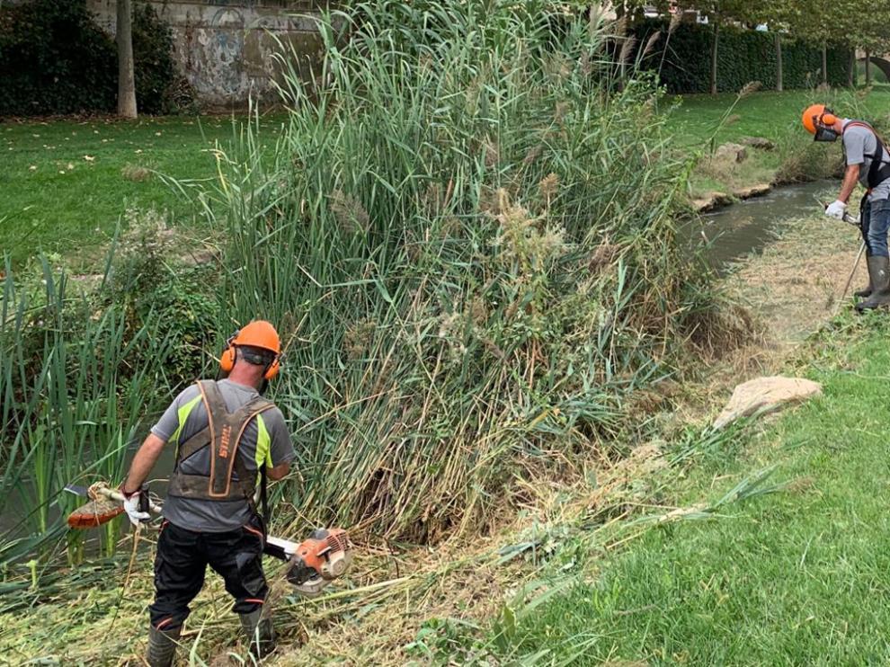 Imagen de los encargados realizando labores de limpieza en el río Sosa