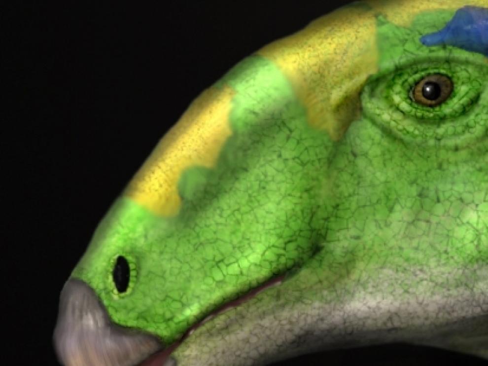 La abundancia de fósiles en el yacimiento de Ariño ha posibilitado la reconstrucción de un esqueleto de Proa, actualmente expuesto en Dinópolis