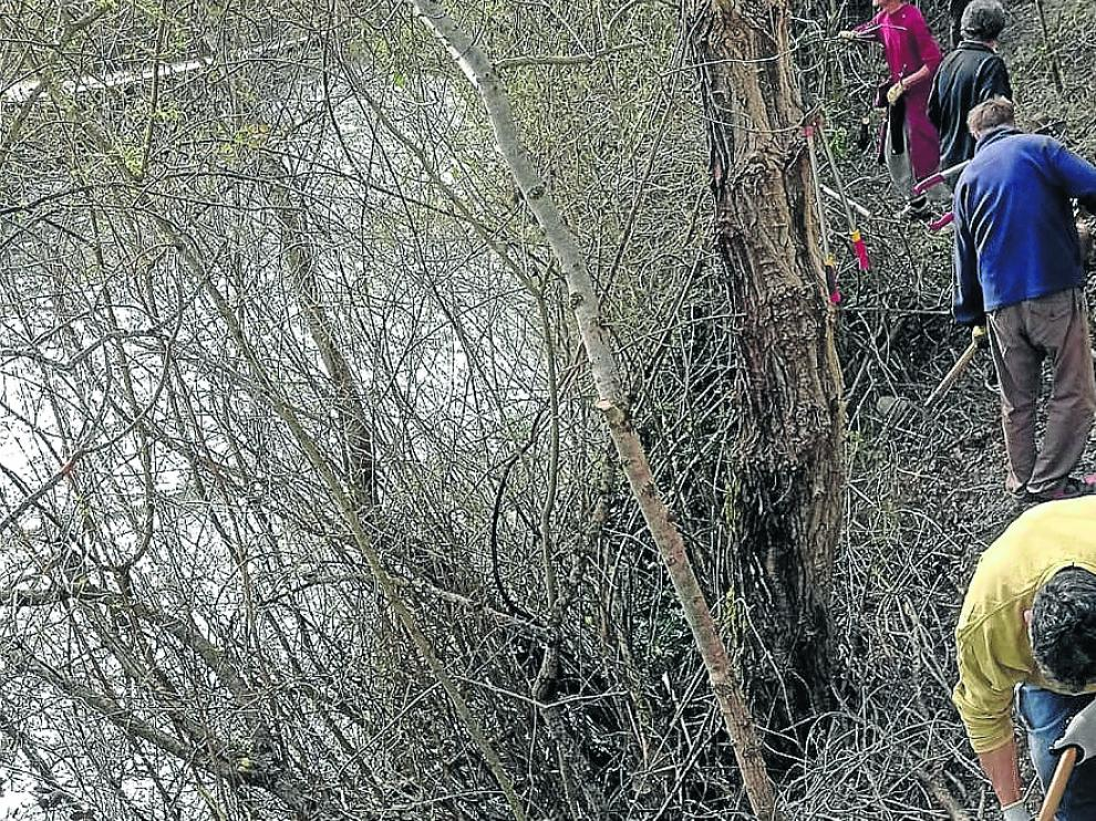 Los vecinos de Senegüé han limpiado varios senderos en las inmediaciones del pueblo.