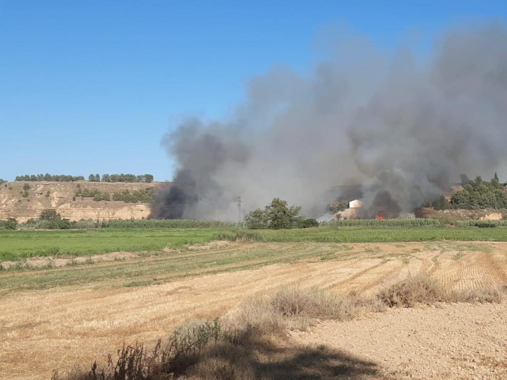 El fuego de  Sariñena afectó a la ribera del Alcanadre y amenazó a una urbanización de viviendas.