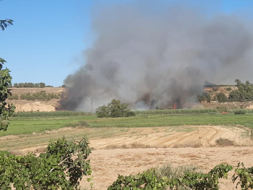 En verano con el calor hay más riesgo de incendios.