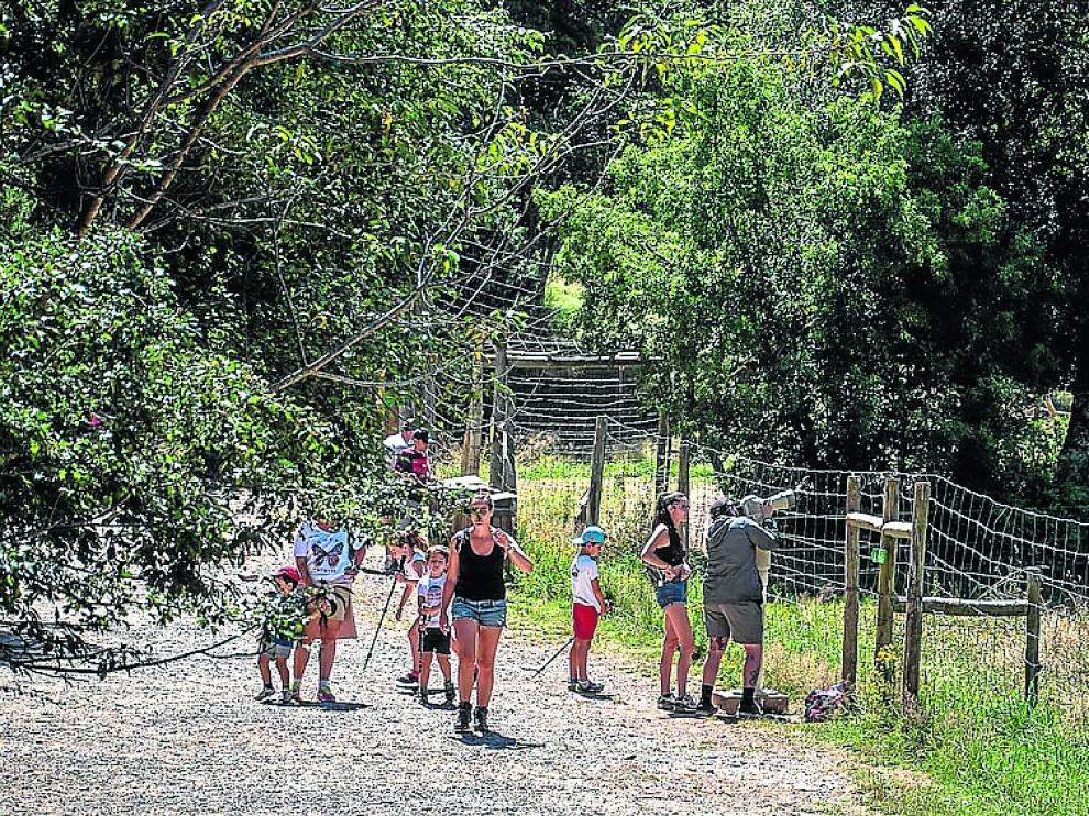 Visitantes al Parque de Lacuniacha este fin de semana.