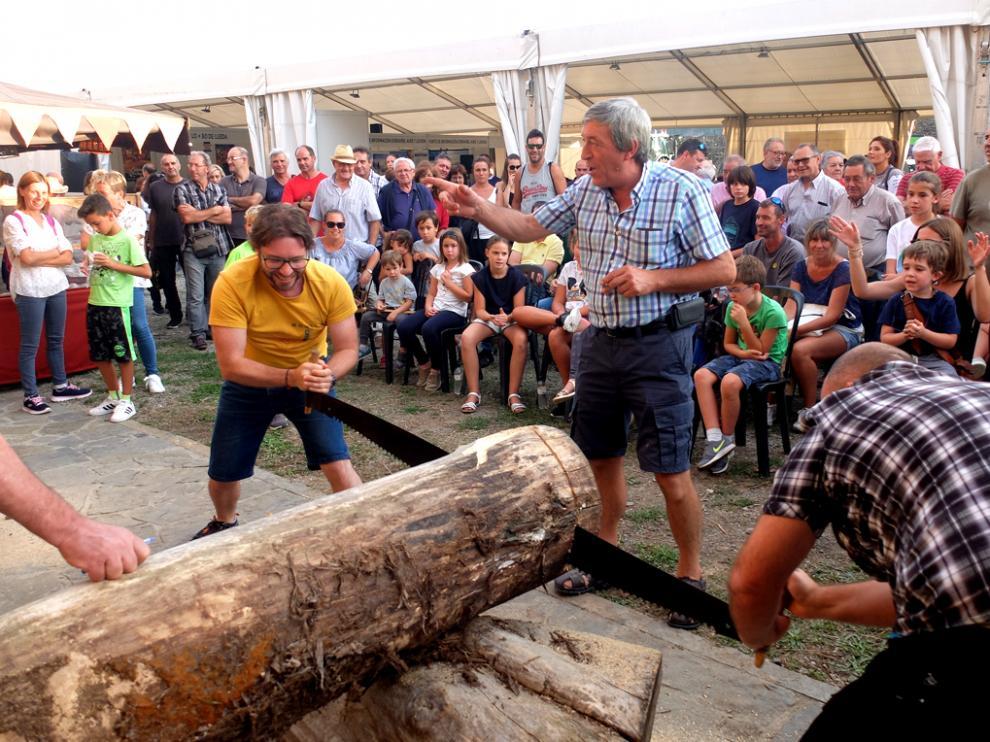 Concurso de Aserrado de troncos