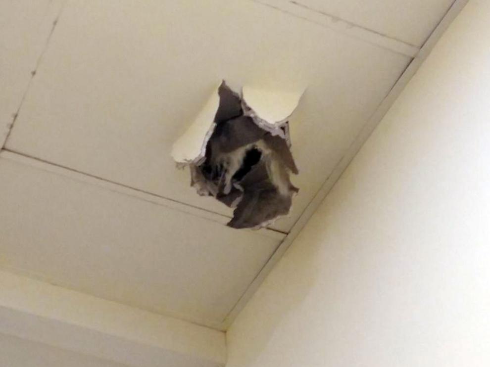 Daños en el falso techo.