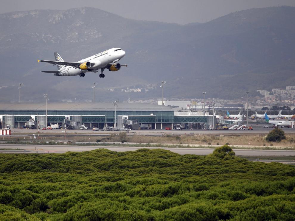 Un avión vuela por el espacio protegido de la Ricarda, en El Prat de Llobregat