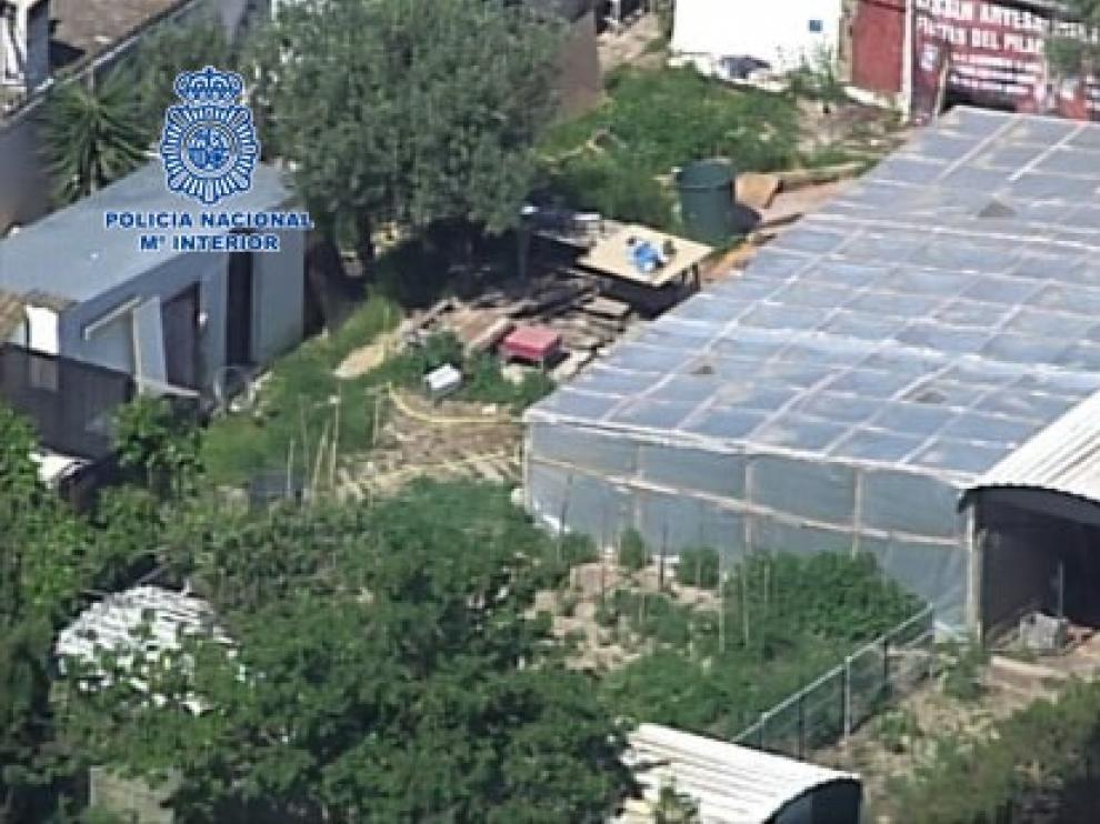 Vista aérea de uno de los invernaderos en los que se cultivaba la droga.