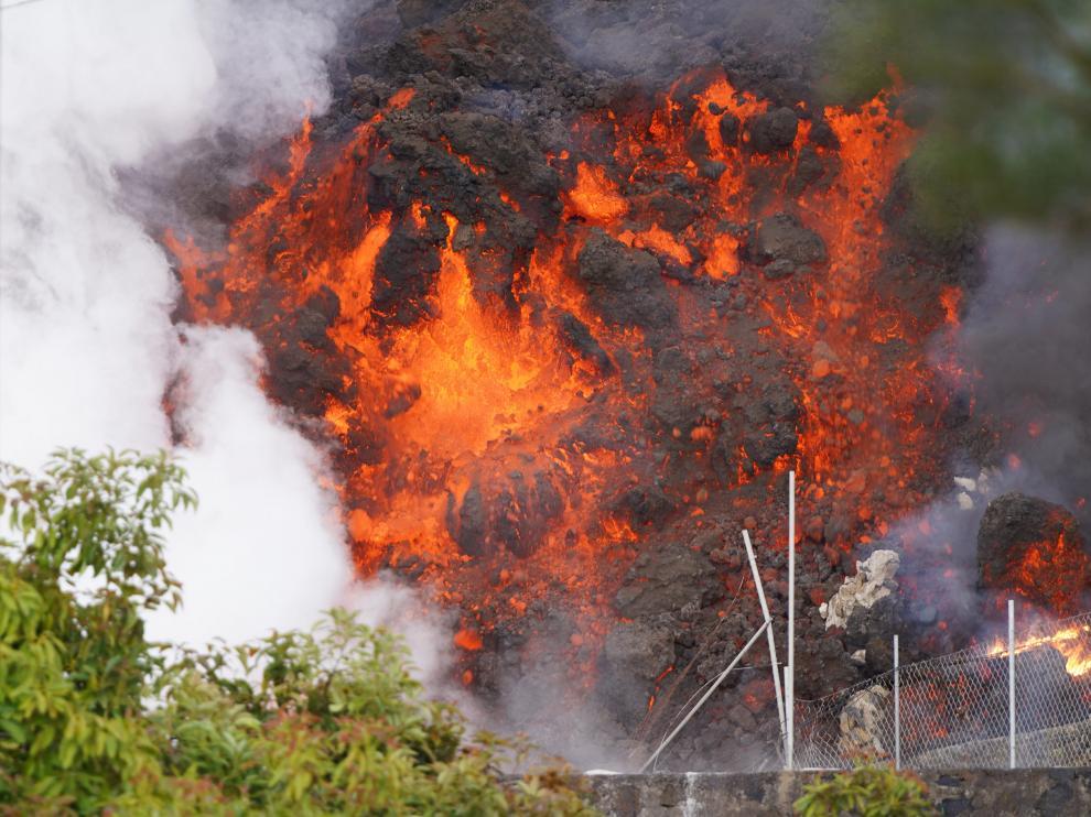La lava sigue avanzando y asolando casas, plantas, animales y todo lo que encuentra a su paso.