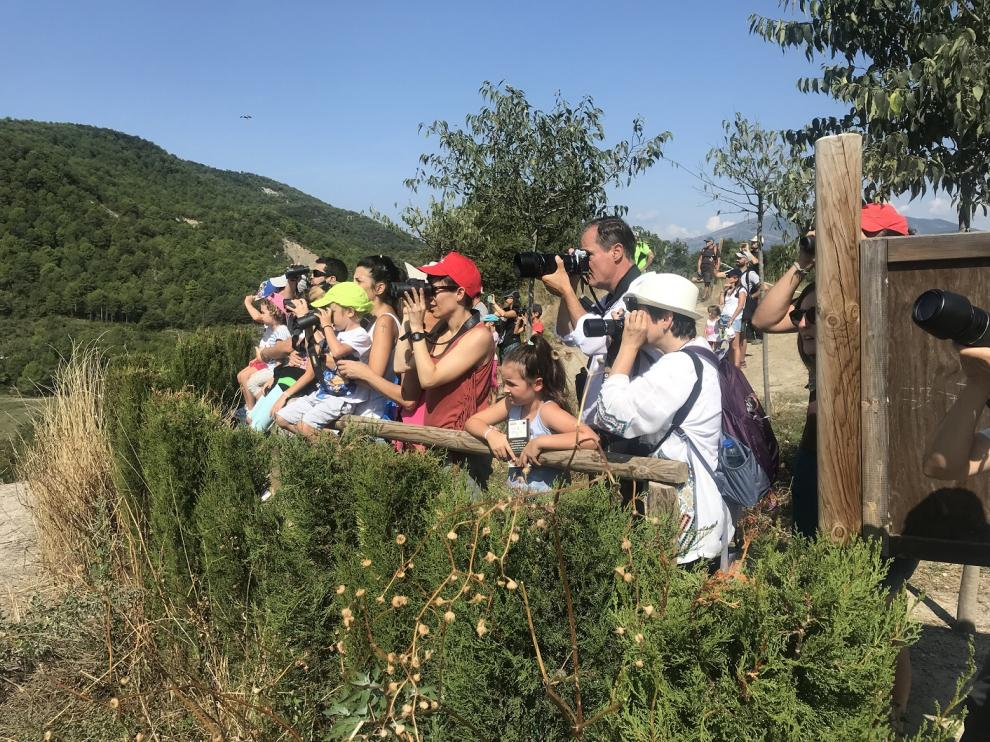 Participantes durante el avistamiento en el comedero de aves necrófagas.