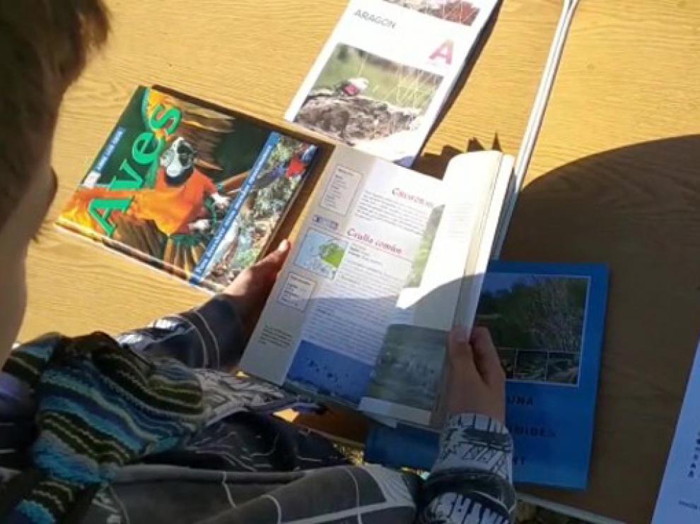 Los talleres están centrados en el Medio Ambiente y el conocimiento del entorno natural de Fraga.