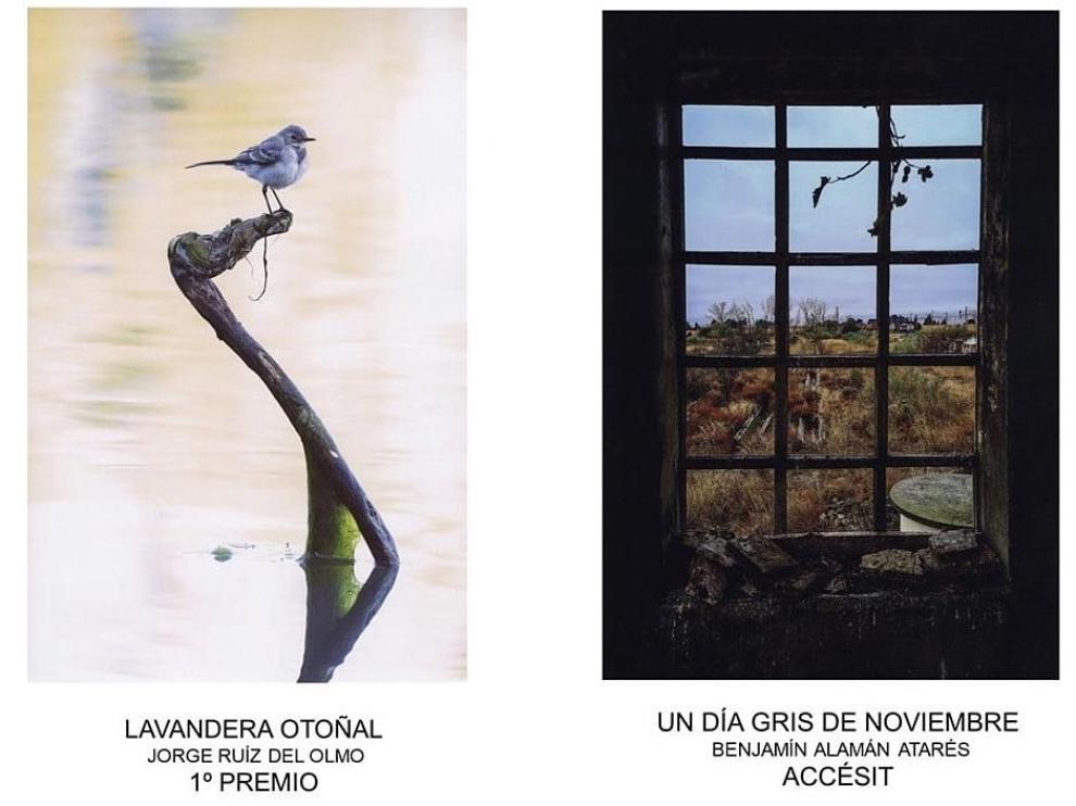 Fotografías ganadoras de la pasada edición del concurso.