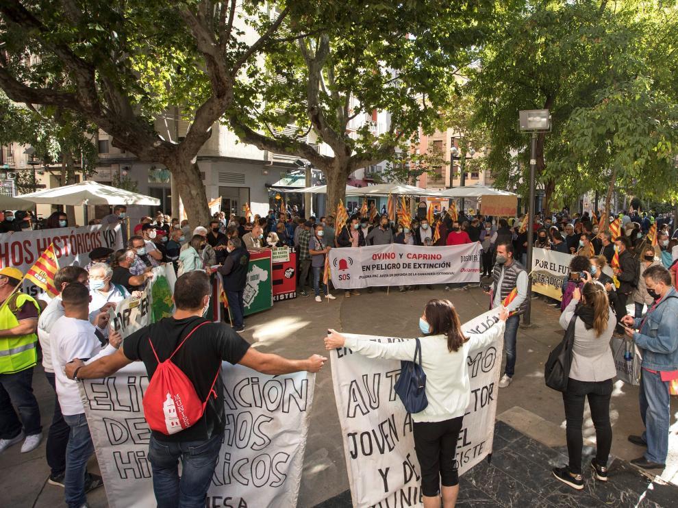 La concentración contra la PAC ha reunido en Zaragoza a ganaderos y agricultores.